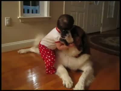 Baby Hugs a Giant Dog