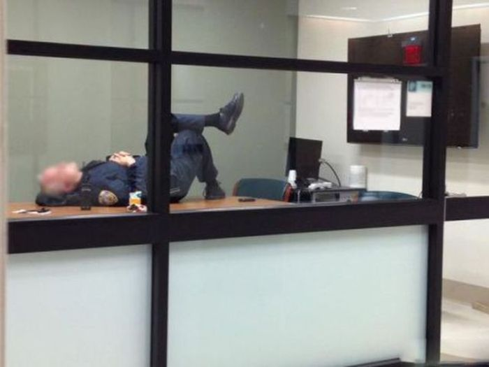 Work Fails & Job LOLs. Part 15 (35 pics)