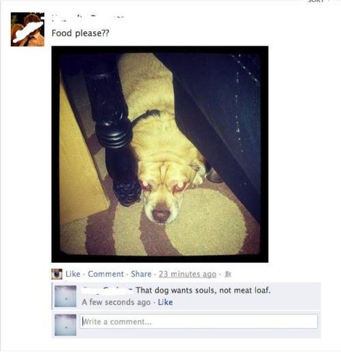 Stupid Posts on Facebook. Part 4 (44 pics)