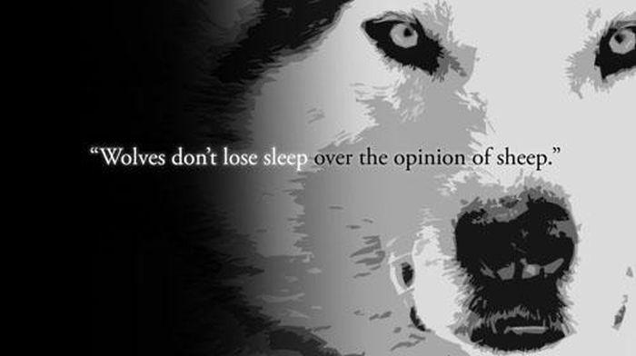 Words of Wisdom. Part 2 (34 pics)