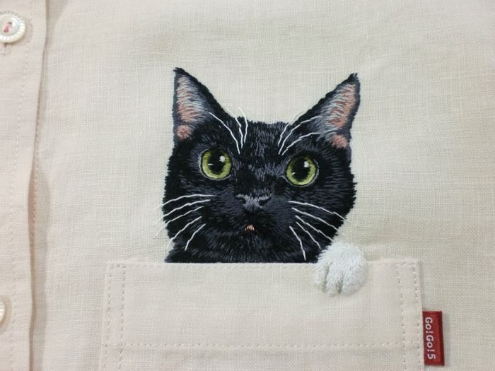 Shirts with Cats (38 pics)
