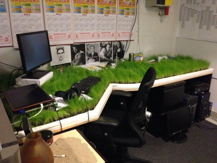 Green Workplace (11 pics)