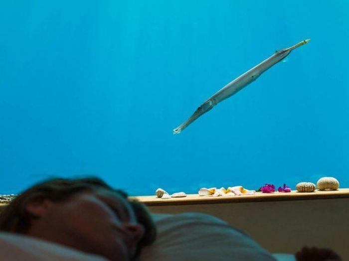 Underwater Hotel Room (11 pics)