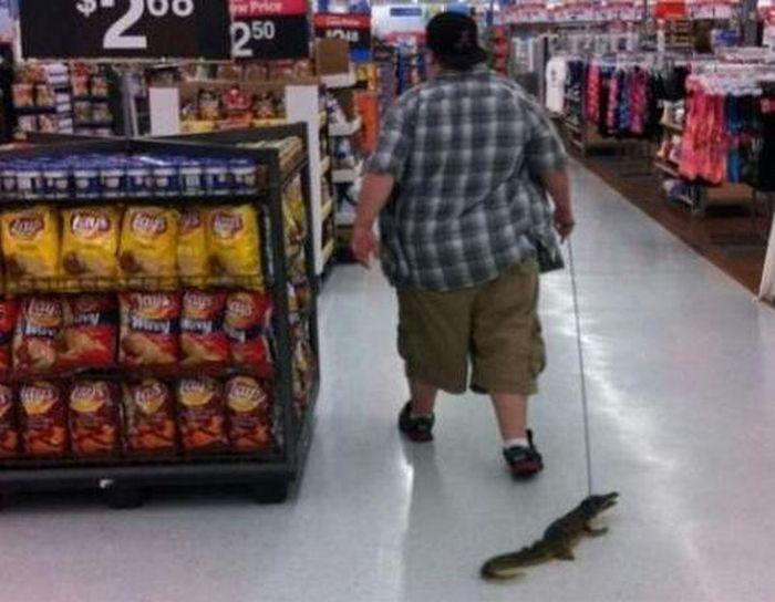 People of Walmart. Part 24 (40 pics)