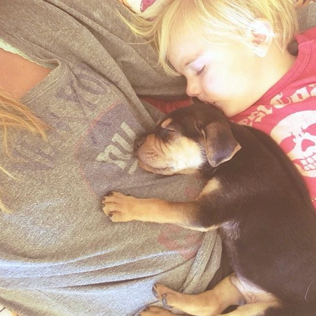 A Toddler and a Puppy Take a Nap (15 pics)