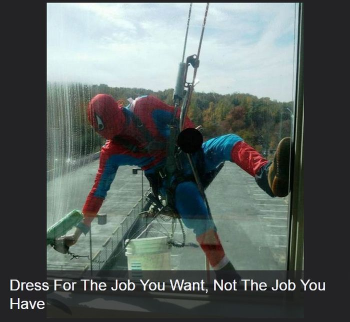 The Best Jobs Ever (27 pics)