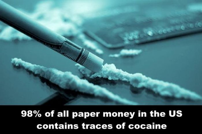 Fun Facts. Part 11 (25 pics)