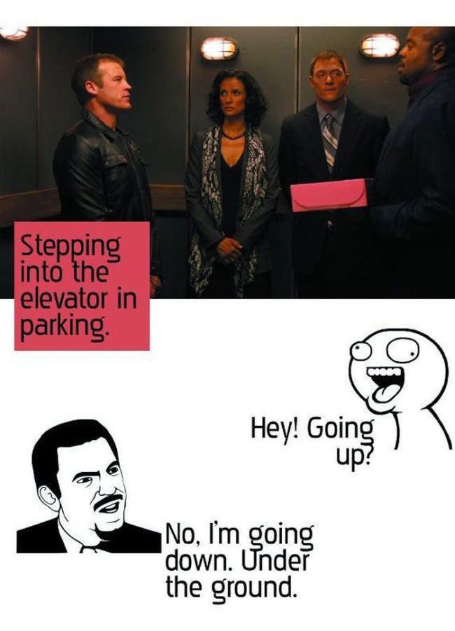 Stupid Questions (5 pics)