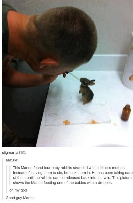 Faith in Humanity Restored Again. Part 2 (30 pics)
