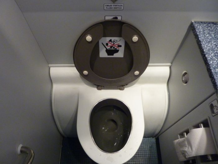 Surprise in an Airplane Toilet (5 pics)
