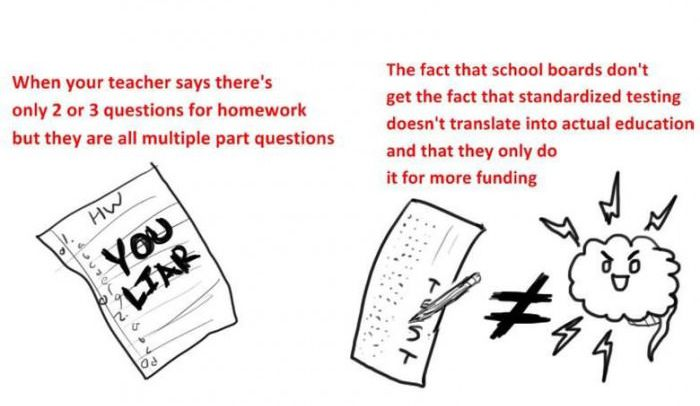 What We Hated at School (7 pics)