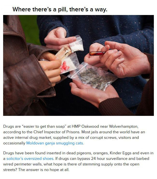 War on Drugs is Useless? (11 pics)
