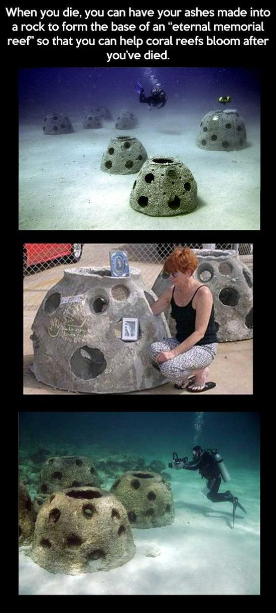 These Things Actually Exist. Part 2 (18 pics)