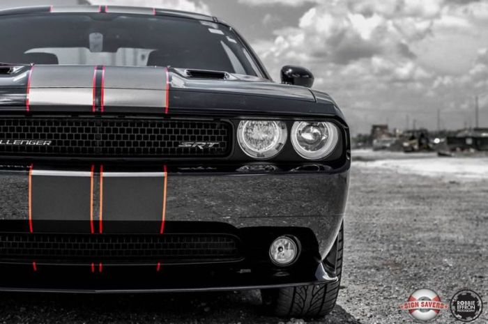 Muscle and Sport Cars (64 pics)