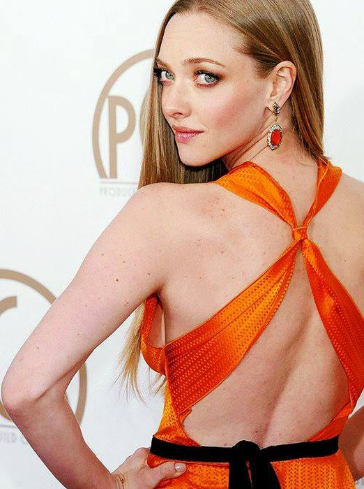 The Hottest Photos of Amanda Seyfried (38 pics)