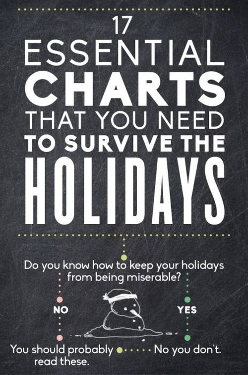 Essential Charts That You Need To Survive The Holidays (18 pics)