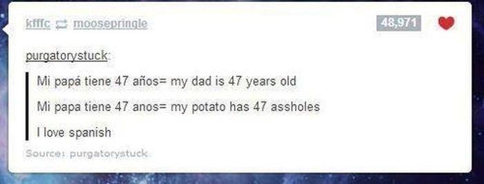 Hilarious Grammar Fails (36 pics)