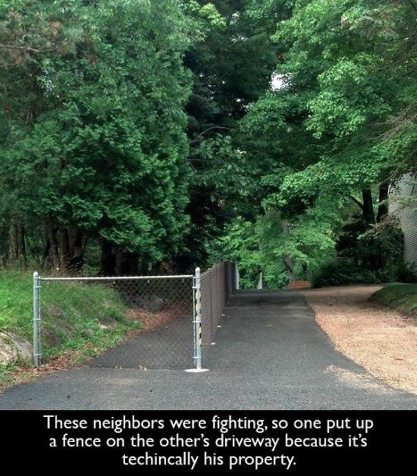 Bad and Good Neighbors (21 pics)