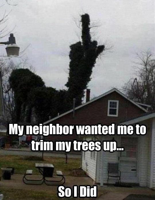 Bad and Good Neighbors (21 pics)
