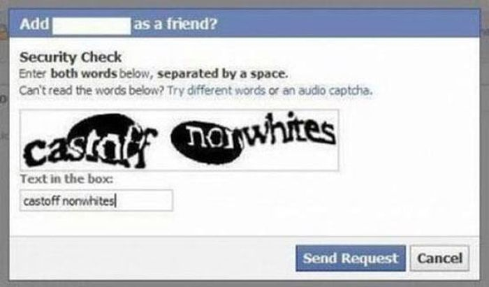 Accidental Racism (30 pics)