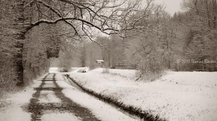 Beautiful Winter (40 pics)