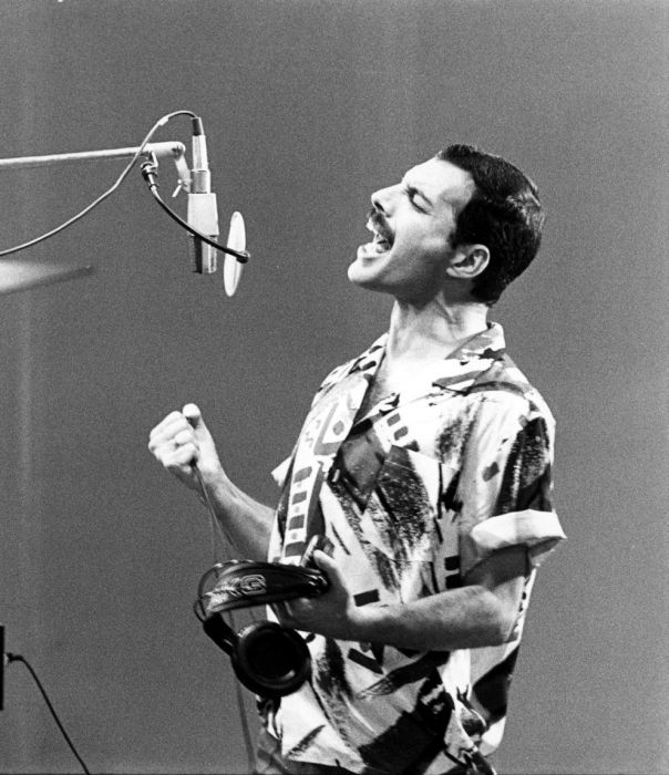 Photos of Freddie Mercury (50 pics)