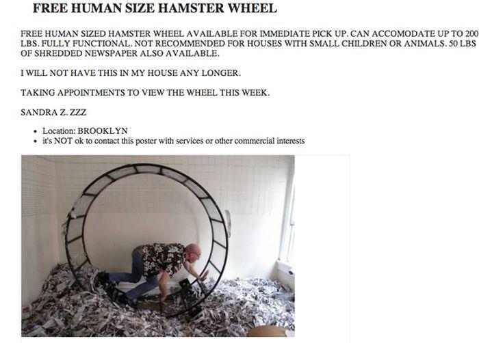 The Weirdest Craigslist Ads of 2013 (19 pics)