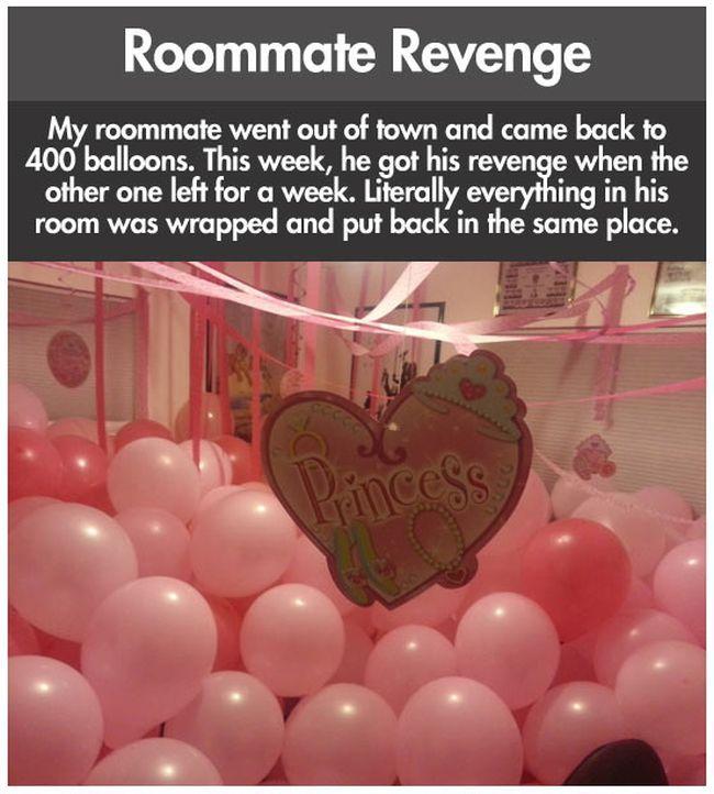 Roommate Revenge (10 pics)