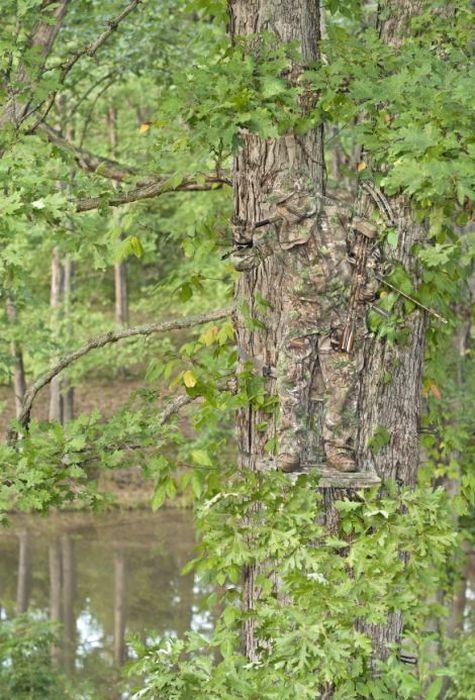 Camouflage (10 pics)