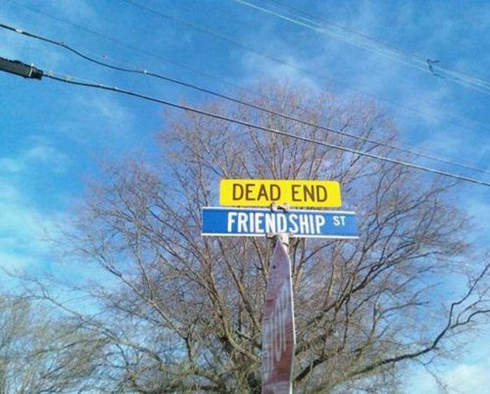 WTF Signs. Part 40 (30 pics)