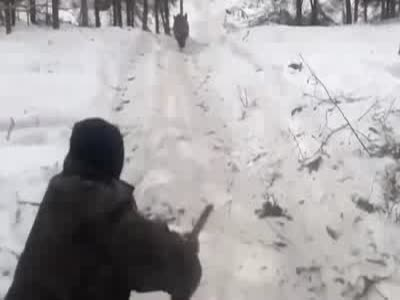 Hunting a Wild Boar Gone Wrong
