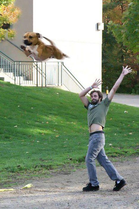 Photoshopping Things (46 pics)