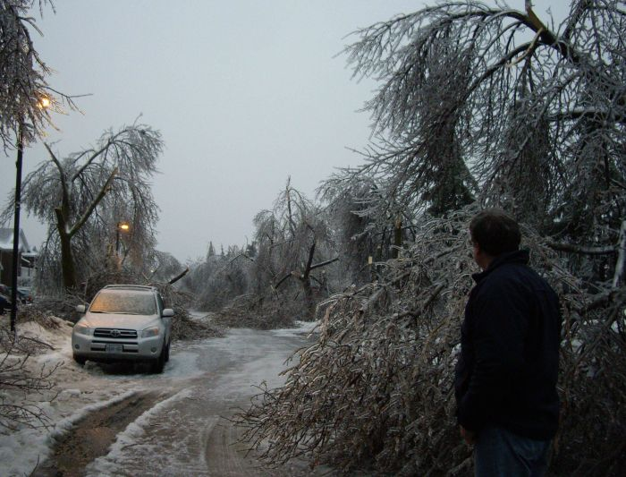 Ice Storm in Canada (21 pics)