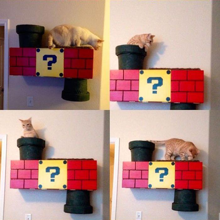 Super Mario Cat Shelf (10 pics)