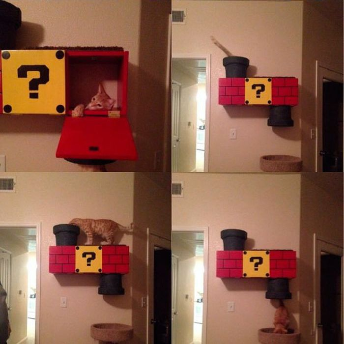 Super Mario Cat Shelf (10 pics)
