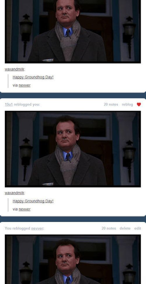 Tumblr Dashboard Coincidences (30 pics)