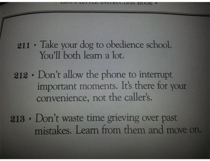 Life's Little Instruction Book (30 pics)