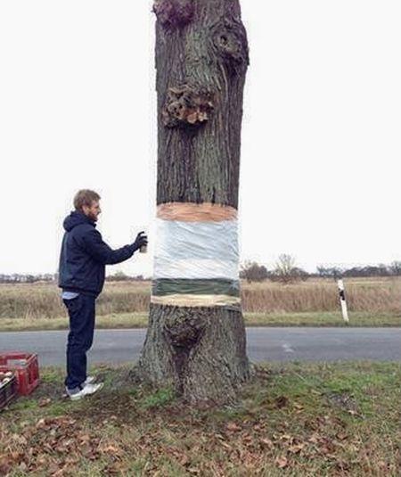 Levitating Tree (3 pics)