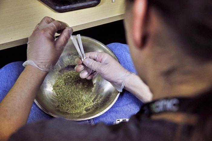 Colorado Legalizes Marijuana (11 pics)