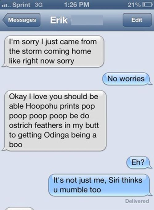 Texting Wins And Fails (28 pics)