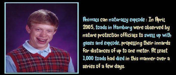 Unbelievable but True Facts. Part 2 (45 pics)