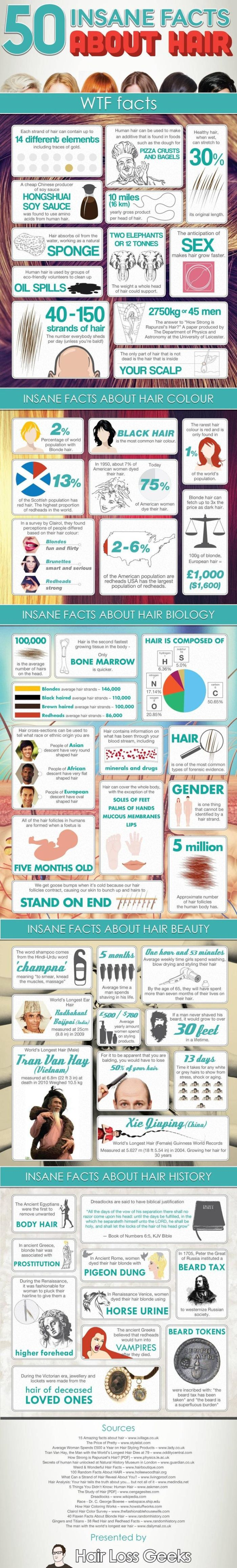 50 Insane Facts About Hair (infographic)