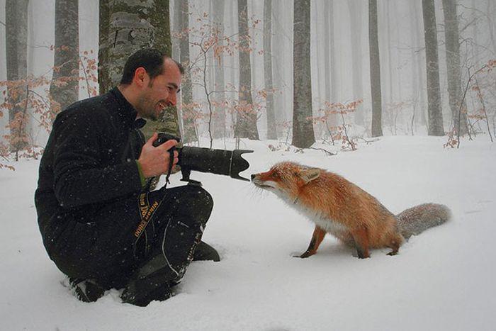 Beautiful Moments (31 pics)