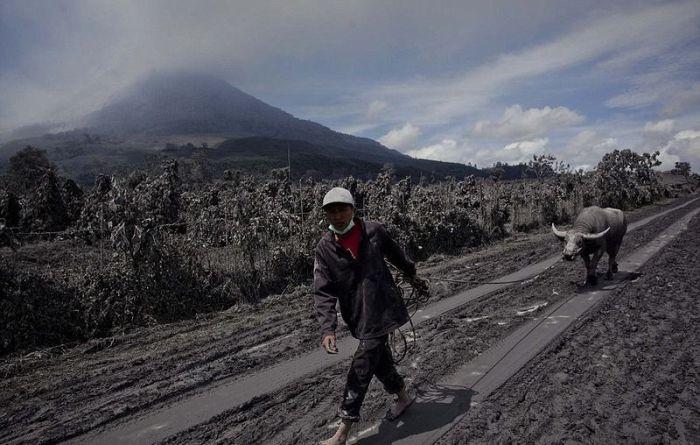 Mount Sinaburg Erupts (28 pics)
