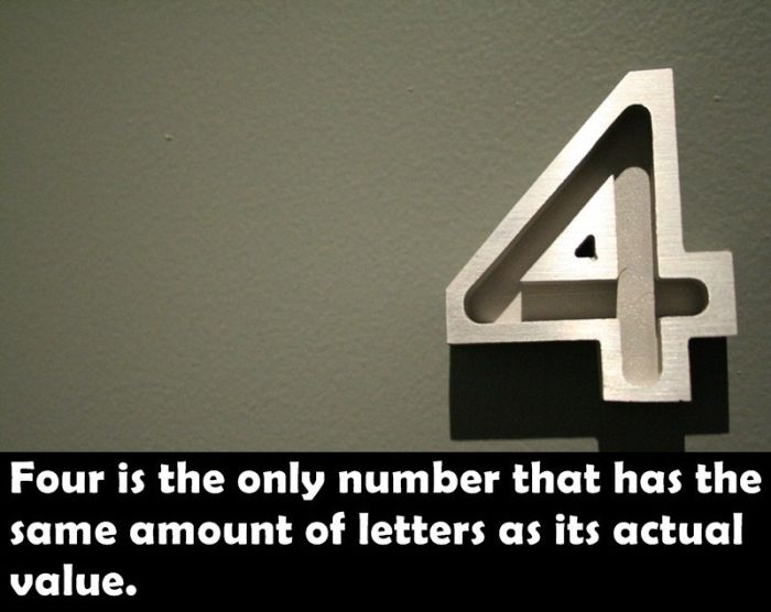 Fun Facts. Part 18 (25 pics)
