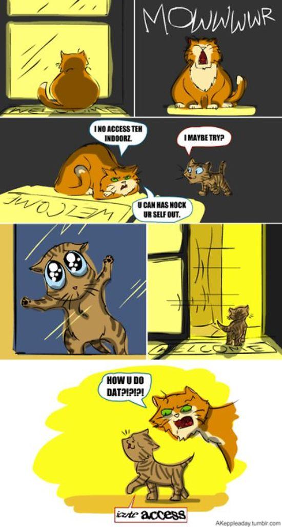 Funny Captchas (20 pics)