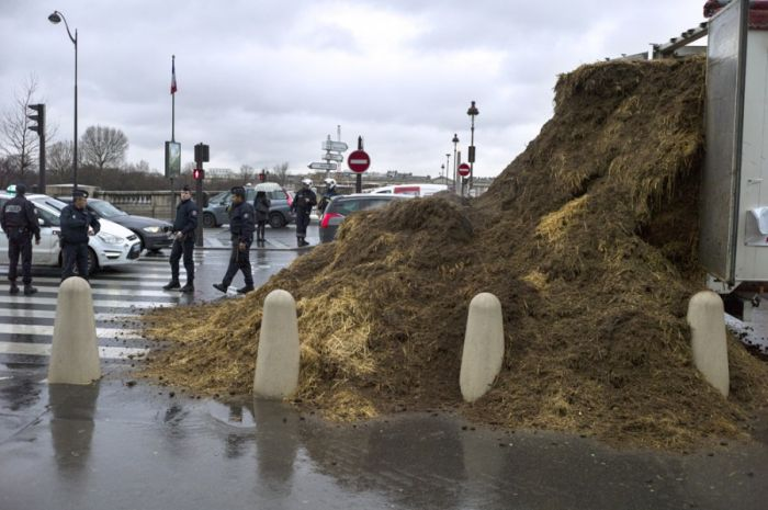 Stinky Protest in France (4 pics)