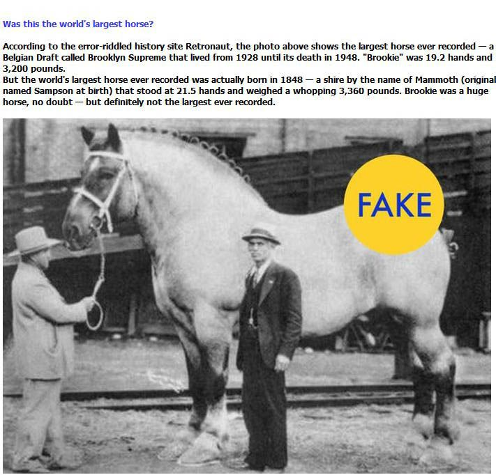 """""""Facts"""" That Are Lies (7 pics)"""
