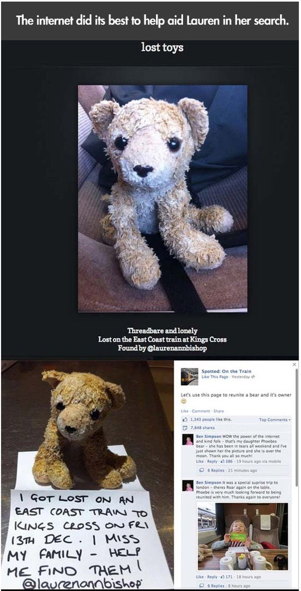 Lost Stuffed Animal (15 pics)