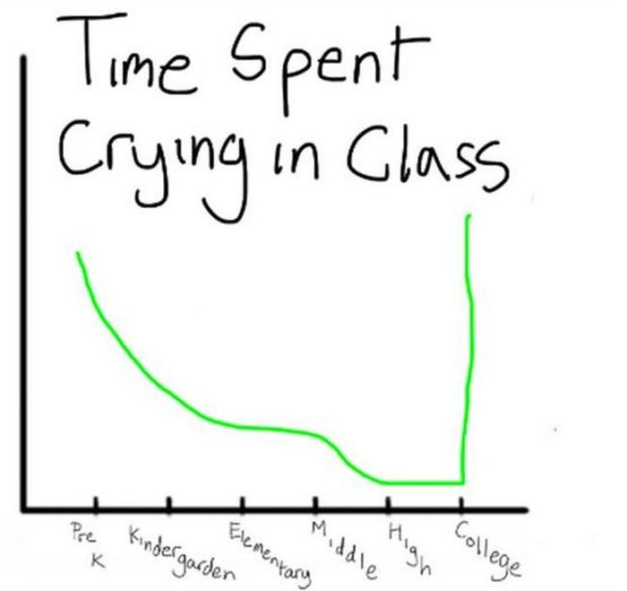 Lifetime as a Student in the Charts (7 pics)